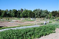 Jardins de la Faye (Copier)