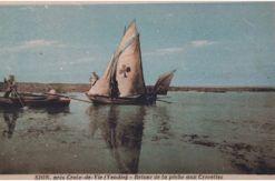 Illustrations-Photothèque-Découvrir-Saint-Hilaire-de-Riez-livarde-biche-ancienne3324